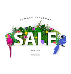 summer sale background or banner vector image