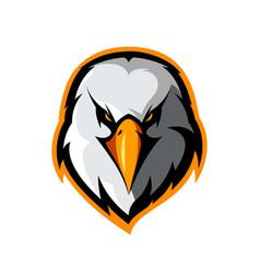 furious eagle head athletic club logo vector image vector image