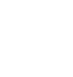 ancient street lamp vector image