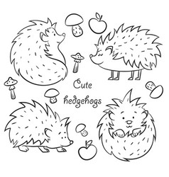 Four cute hedgehogs vector