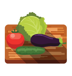 fresh cabbage tomato cucumber eggplant on board vector image