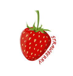 logo icon design strawberry farm vector image