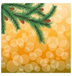 fir twig vector image vector image