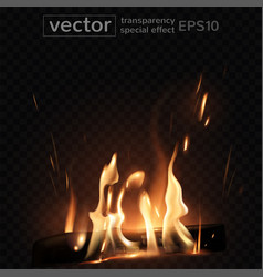 burning fire in the fireplace firewood coals vector image