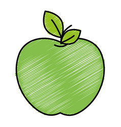 Fresh apple fruit icon vector