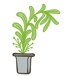 houseplant with lush leaves in pot potted flora vector image