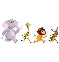 Four wild animals running vector image