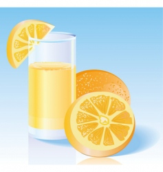 fresh orange juice vector image