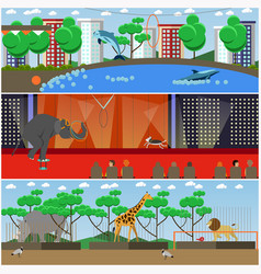 set of dolphinarium circus and zoo vector image vector image