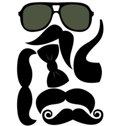 party accessories man set - glasses mustache bow vector image vector image