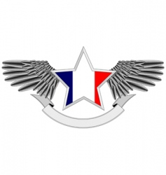 winged star with french flag vector image vector image