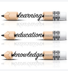 Education And Learning Step Infographic With Carve vector image