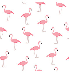 Flamingo seamless pattern vector