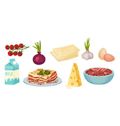 Lasagna ingredients with prepared dish served on vector