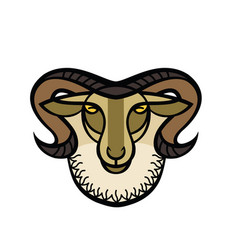 drawing head of horned ram vector image vector image