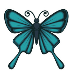 Beautiful butterfly with big wings vector