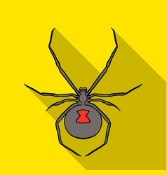 Black widow spider icon in flat style isolated on vector