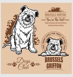 Brussels griffon - set for t-shirt logo vector