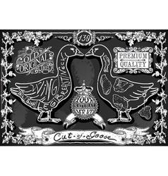 Vintage Blackboard of English Cut of Goose vector image