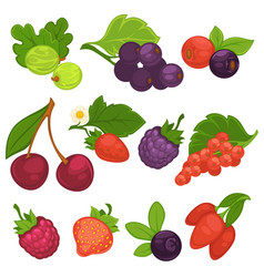 berry fruits isolated flat icons for jam or vector image vector image