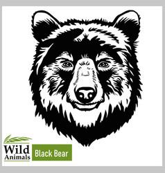 black bear head mascot - bear head vector image