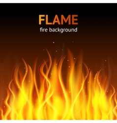 Flame dark background vector image