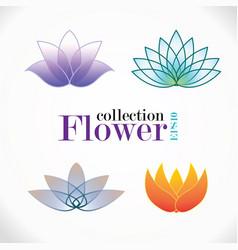 Flower logo collection vector