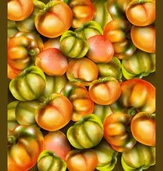 green tomatoes watercolor grocery harvest fresh vector image