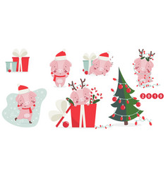 Happy new year greeting card with cute pig vector