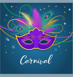 mardi gras - fat tuesday carnival celebration vector image