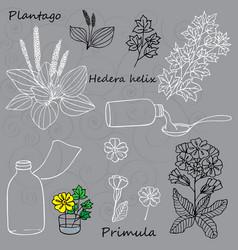 cough medicine vector image