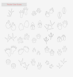 foot set style line icons on white vector image