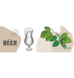 beer graphical objects used for beer festival vector image