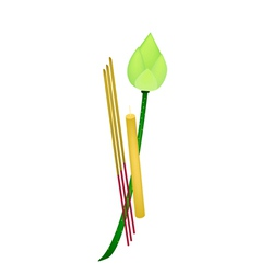 Fresh Lotus with Joss Sticks and Candle vector image