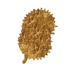 Golden splash vector image