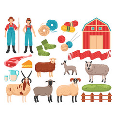 Sheep breeding farm set vector