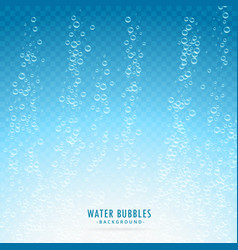 Water bubbles on transparent blue background vector