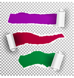torn paper with curls realistic paper hole vector image vector image