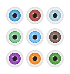 realistic eyeball set vector image