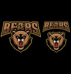 bears mascot logo vector image