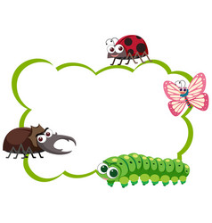 Border template with four types of insects vector