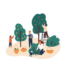 family working in fruit garden together flat vector image
