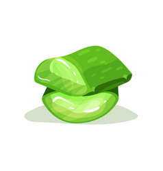 Pieces of aloe vera natural ingredient used in vector