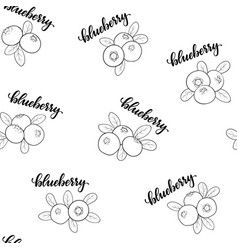 Seamless pattern blueberry with word text vector