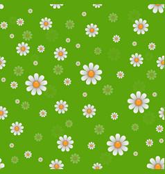 daisy flowers texture vector image