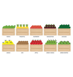 fruits and berries in wooden box icons collection vector image