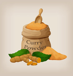 Powder of curry in a canvas bag and roots of vector
