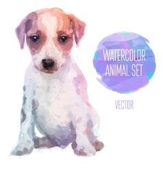 set watercolor cute jack vector image