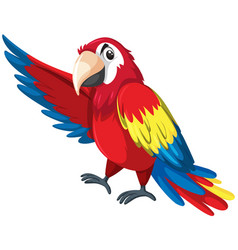 a colourful parrot character vector image