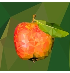 a red apple with green leaf in vector image